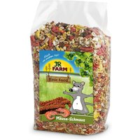 JR Farm Feast for Mice - Economy Pack: 2 x 600g
