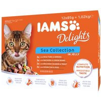 IAMS Delights Adult Sea Collection - Sea Collection in Gravy (12 x 85g)