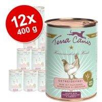 Pack Ahorro: Terra Canis Menú sin cereales 12 x 400 g - Venado