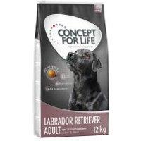Concept for Life Labrador Retriever Adult - 2 x 12 kg - Pack Ahorro
