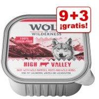 Wolf of Wilderness tarrinas 12 x 300 g en oferta: 9 + 3 ¡gratis! - High Valley, con vacuno