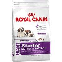 Royal Canin Giant Starter- Mother & Babydog - 15kg