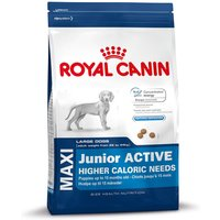 Royal Canin Maxi Junior Active - Economy Pack: 2 x 15kg