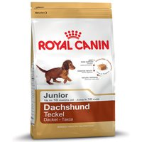 Royal Canin Breed Dry Dog Food Economy Packs - Jack Russell Junior (2 x 1.5kg)