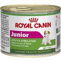 Royal Canin Wet Mini Junior - Appetite Stimulation - Saver Pack: 24 x 195g