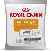 Royal Canin Energy Training Reward - Energy Booster - Super Saver Pack: 10 x 50g