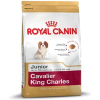 Royal Canin Cavalier King Charles Junior - Economy Pack: 2 x 1.5kg