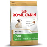 Royal Canin Pug Junior - 1.5kg