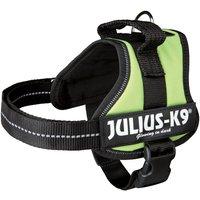 Julius K9 Power Harness - Light Green - Size 0