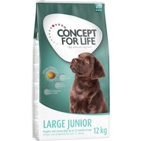 Concept for Life Large Junior - lot % : 2 x 12 kg