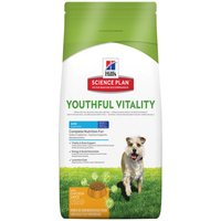 Hills Canine 7+ Youthful Vitality Mini with Chicken & Rice - Economy Pack: 2 x 6kg