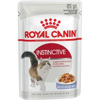 Royal Canin Wet Cat Food Saver Pack 48 x 85g - Kitten Instinctive in Gravy