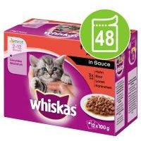 Megapack Whiskas Junior 2-12 meses 48 x 85/100 g en bolsitas - Casserole Selección de aves en gelatina (48 x 85 g)