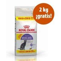 Royal Canin Feline 12 kg: 10 + 2 kg ¡gratis! - Maine Coon Adult