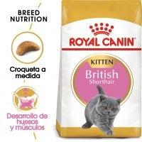 Royal Canin British Shorthair Kitten - 400 g