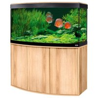 Fluval Aquarium-Kombination Vicenza 260 - kernbuche