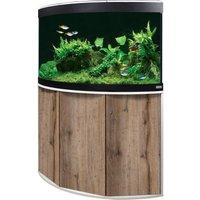 Fluval Aquarium-Eck-Kombination Venezia 190 - kernbuche