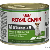 Royal Canin Wet Mini Mature 8+ - Appetite Stimulation - Saver Pack: 24 x 195g