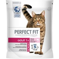 Perfect Fit Adult 1+ Rich in Salmon - 1.4kg