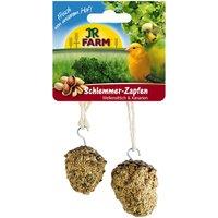 2 Pommes de pin gourmande pour perruche et canari JR Birds - Friandise pour oiseau
