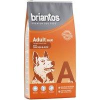 Briantos Adult Maxi Chicken & Rice - 14kg