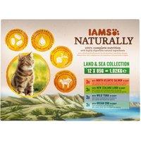 IAMS Naturally Cat Adult Mix - 4 x 85g