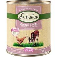 Lukullus Junior Saver Pack 24 x 800g - Chicken & Veal