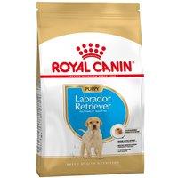 2x12kg Labrador Retriever Puppy Chiot Royal Canin - Croquettes pour chien