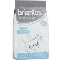 Briantos Junior Young & Care monoproteico - 2 x 14 kg - Pack Ahorro