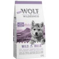 Little Wolf of Wilderness Junior Wild Hills con pato - 1 kg
