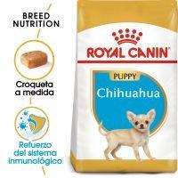 Royal Canin Chihuahua Puppy - 1,5 kg