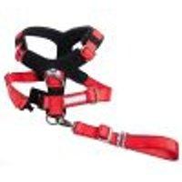 Pettorina di sicurezza Kleinmetall Allsafe Comfort Taglia S: per cani di taglia piccola
