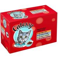 Catessy Chunks in Sauce - 12 x 100g