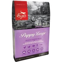 Orijen Puppy Large pienso para perros - 2 x 11,4 kg - Pack Ahorro