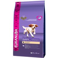 Eukanuba Puppy Food - Lamb & Rice - Economy Pack: 2 x 12kg