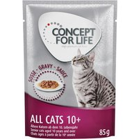 Concept for Life All Cats 10+ in Gravy - 48 x 85g