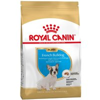 2x10kg Bouledogue Puppy / Junior Royal Canin Breed French Bulldog pour chiot