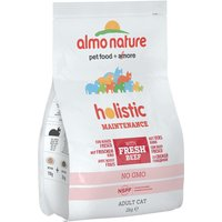 Almo Nature Holistic Beef & Rice - Economy Pack: 2 x 2kg