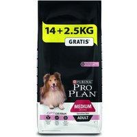 Large Bags Purina Pro Plan Dog Food + 2kg/2.5kg Extra Free!* - Adult Large Athletic OptiDigest - Lamb (16.5kg)