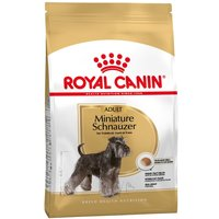 3kg Schnauzer Nain Adult Royal Canin - Croquettes pour chien