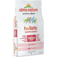 Almo Nature Holistic Dog Food Large Adult Beef & Rice - Economy Pack: 2 x 12kg
