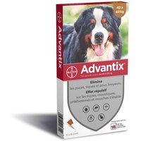 2x4 pipettes Advantix® très grand chien 40-60 kg - Pipettes antiparasitaires pour chien