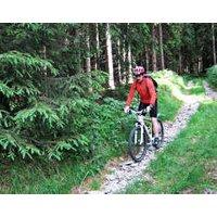 Mountainbike-Kurs Neuhaus am Rennweg