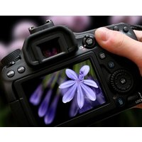 Fotokurs Online Seminar