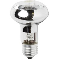 status-halogen-reflector-bulb-edison-screw-42w