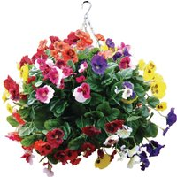 22-mixed-colours-pansy-ball