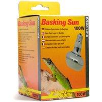 Lucky Reptile Basking Sun 100 W