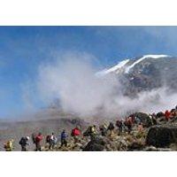 Save 5.00%! 8 Days Lemosho Route-kilimanjaro Climbing