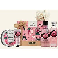 Bloom and Glow British Rose Big Gift Bloom and Glow British Rose Big Gift