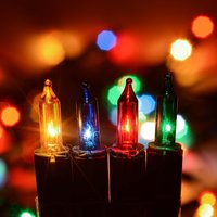 Christow 100 Multi Coloured Indoor Fairy Lights